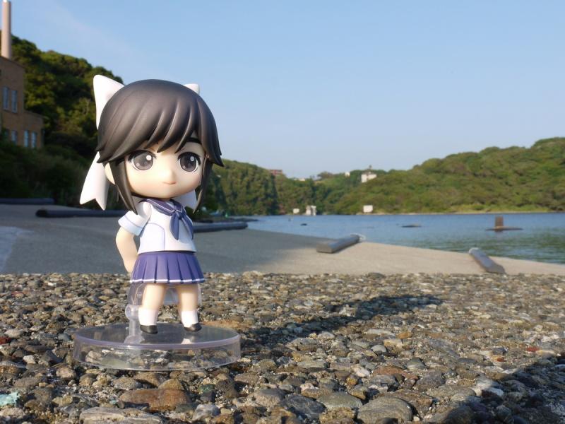 三浦海岸野外撮影