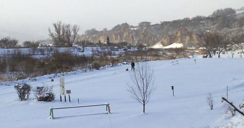 雪の夜間瀬川河川公園(24.12.24)