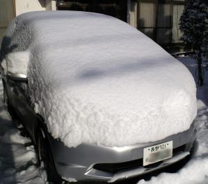 雪に埋まったフィット(24.12.24)