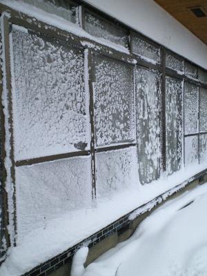 吹雪のわが家(24.12.26)