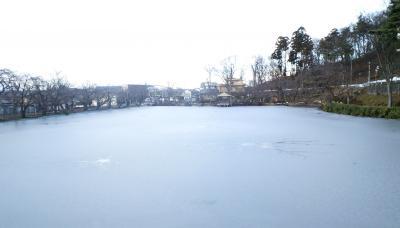 湖面は結氷(25.1.1)