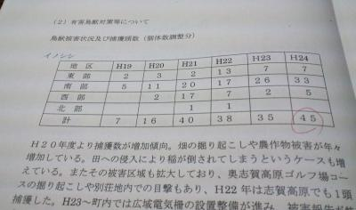 イノシシ資料(25.1.17)