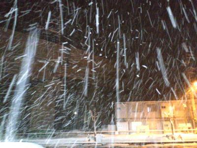 北陸新幹線高架の前もすごい雪(25.2.11)
