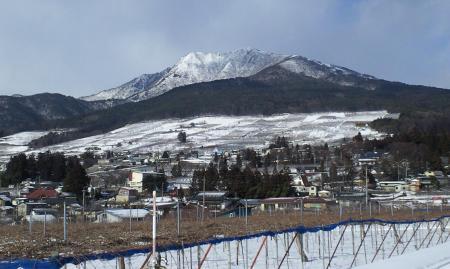 宇木から見た高社山(25.2.13)
