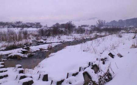 雪の夜間瀬川(25.2.18)