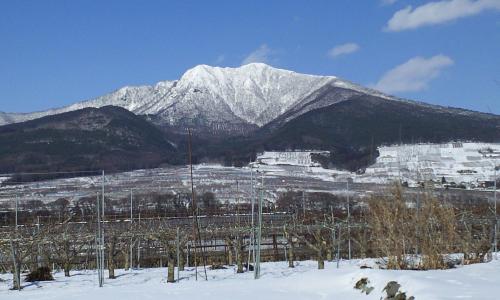 竹原から見た高社山(25.2.22)