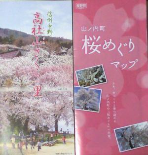 周辺の桜パンフレット(25.4.11)