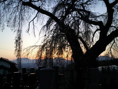 北信五岳に夕日(25.4.13)