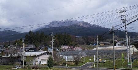 白くなった高社山(25.4.19)