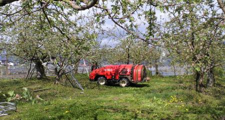 リンゴの防除作業(25.5.1)
