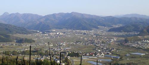 山ノ内町を見下ろす(25.5.9)