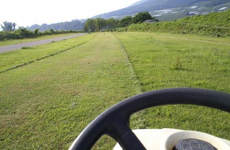 草刈り中(25.6.29)
