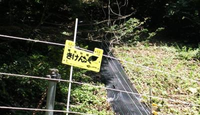 きけん(25.8.9)