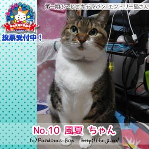 10番 風夏ちゃん