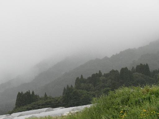 霧かかる山々