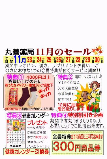 2013表11月セール3