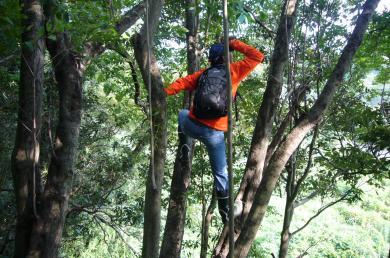 木登りセーケンさん