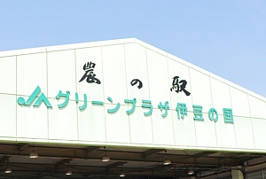 201104_ichigogari_01.jpg