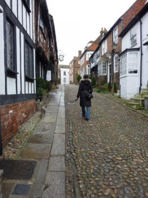 2011Feb Canterbury 036