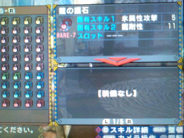 龍耐性+11