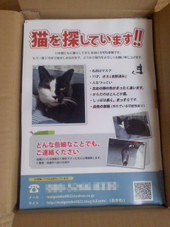 chirashi_haitatsu_01.jpg