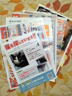 chirashi_haitatsu_02.jpg