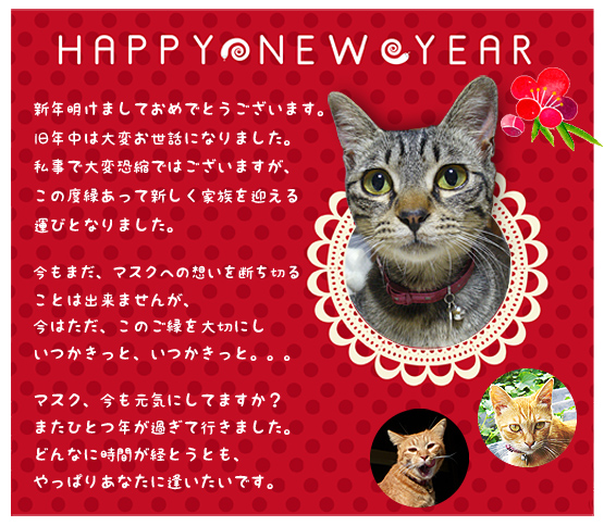 happy_new_year_2013_01.jpg