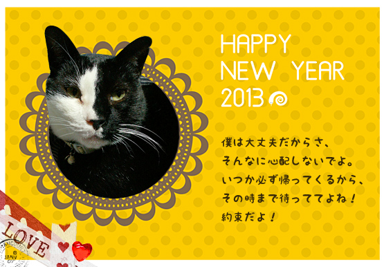 happy_new_year_2013_02.jpg