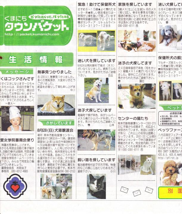 kumanichi_town_packet_20110827.jpg