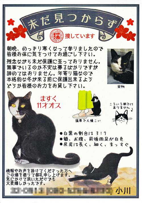 mask_chirashi_03.jpg
