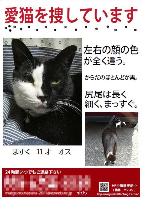 mask_chirashi_04_b.jpg