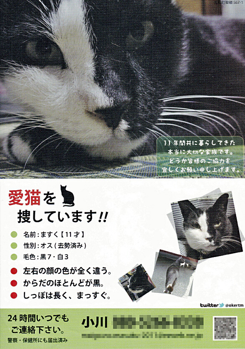 mask_chirashi_05_b.jpg