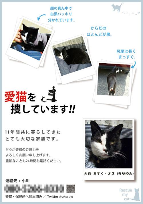 mask_chirashi_06.jpg