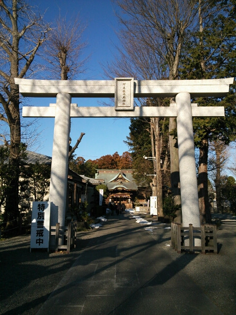 neko_kaeshi_no_jinja_01.jpg