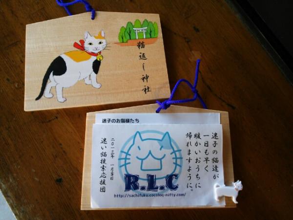 neko_kaeshi_no_jinja_02.jpg