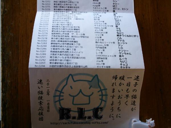 neko_kaeshi_no_jinja_06.jpg