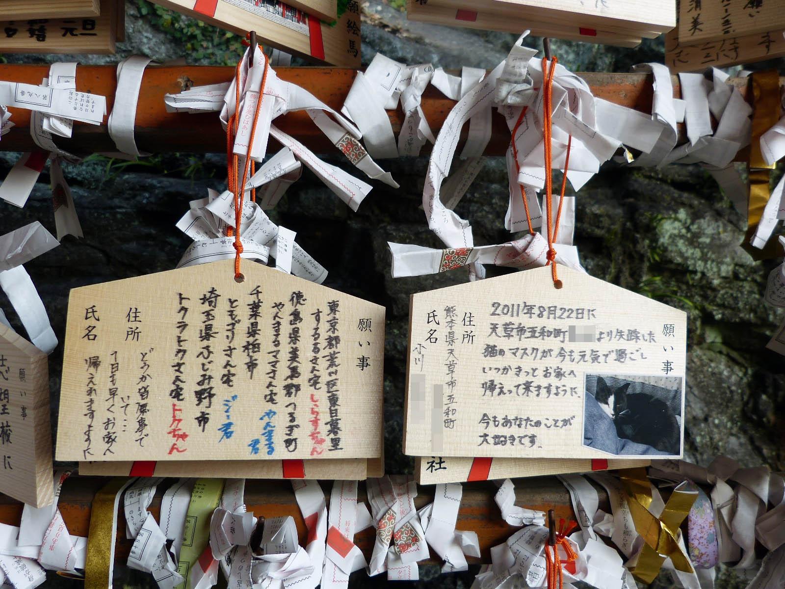 takahashi_inari_jinja_14.jpg