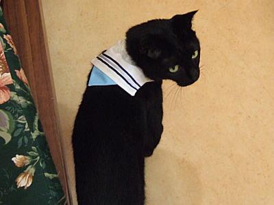 0908ohagi-san1.jpg