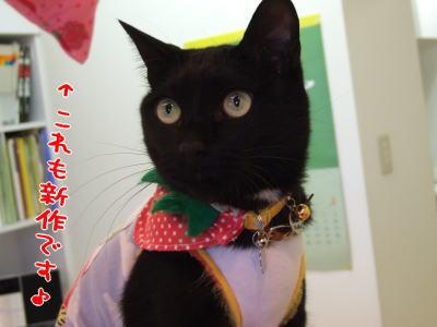 ohagisan-ichigo.jpg
