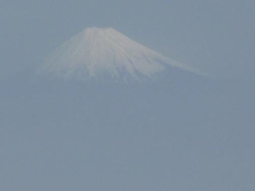 2010札幌 柏 123