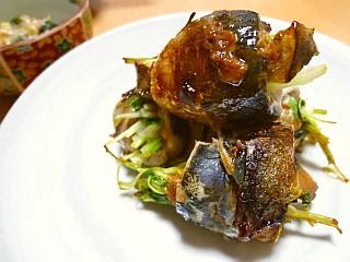 水菜とエリンギのイワシロール~梅肉オイスター風味~