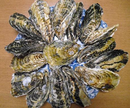 1a 頂いた殻つき牡蠣