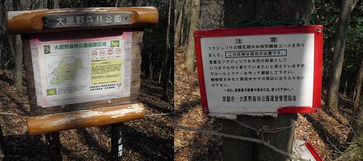 6 福寿草の自生地域