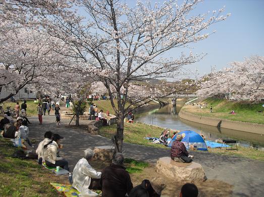4 竜田川・河岸