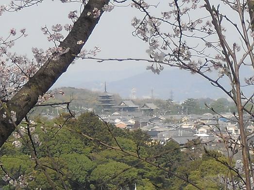 7 三室山より法隆寺を望む