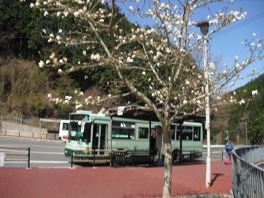 1 金剛山・ロープウェイ前・バス停