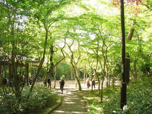 10 瑞宝寺谷公園