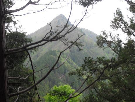 16 白鬚岳を望む