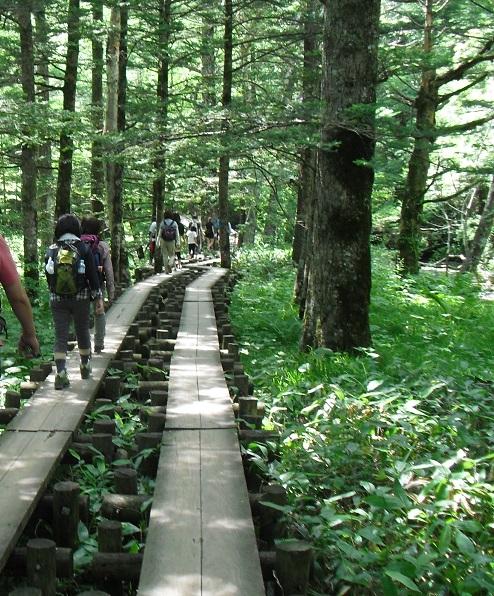 9 木道を歩く