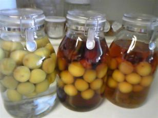 2010年の梅酒